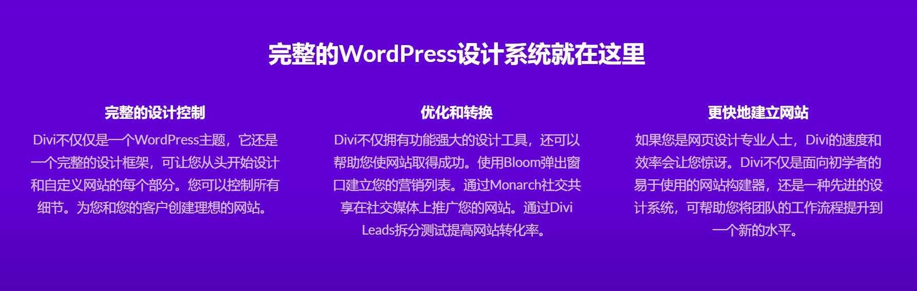 Divi 4.4.3 包含key密匙 WP主题企业中文模板自适应简约科技支持SEO插图4