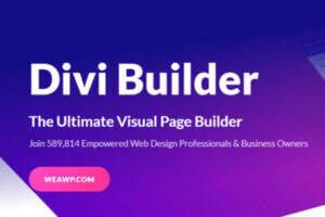 Divi Builder -WordPress通用高端企业建站创意主题
