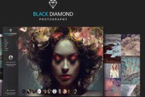 Diamond – 专业的摄影作品展示WordPress主题