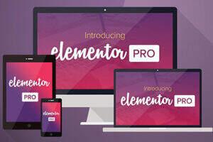 Elementor Pro 汉化版-wordpress 增强版构建器[送海量模板]