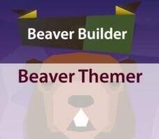Beaver Themer 汉化版-Beaver Builder扩展插件