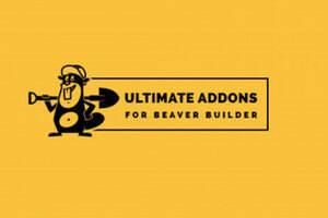 Addons for Beaver Builder Pro汉化版-Beaver Builder部件插件