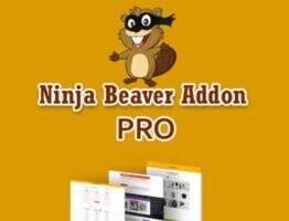 Ninja Beaver Pro汉化版-Beaver Builder可视化元素扩展插件