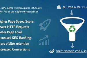 Asset CleanUp Pro-WordPress加速和瘦身插件
