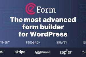 eForm汉化版-WordPress多功能表单插件