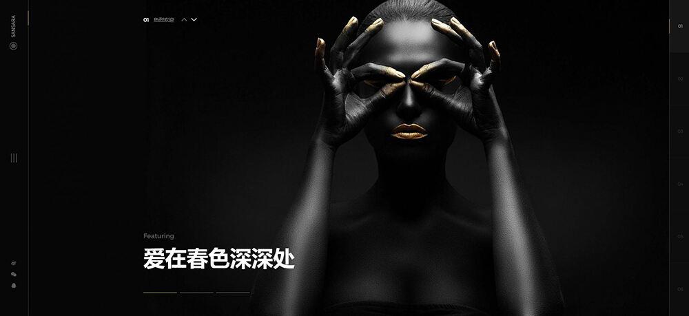 Sansara - 摄影艺术 WordPress 主题