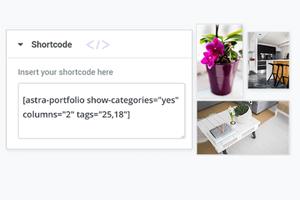 Astra Portfolio –  WordPress 组合 Astra主题高级插件