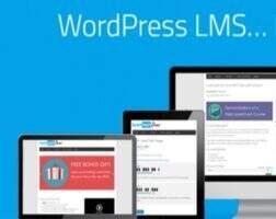 LearnDash 汉化版-WordPress 在线教育LMS 系统插件