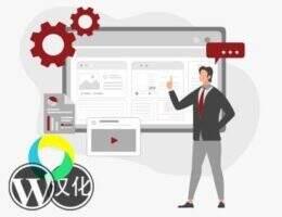 Wisdm Instructor Role汉化版 -LearnDash讲师插件角色