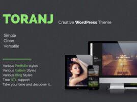 Toranj 汉化版-两栏式图片创意作品营销 WordPress主题
