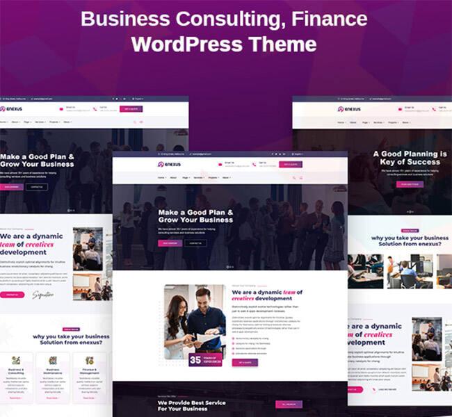 企业咨询服务网站主题:Enexus