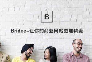 Bridge 汉化-功能强大的企业商业网站主题