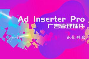Ad Inserter Pro汉化版-WordPress广告管理插件