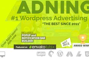 Adning Advertising 汉化版-WordPress广告管理器插件