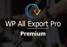 WP All Export Pro汉化版-WordPress专业数据导出插件
