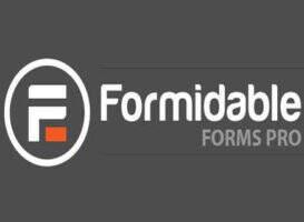 Formidable Forms Pro 汉化版-wordpress表单插件